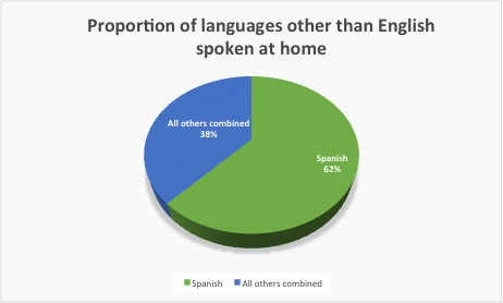 Spanish in Immigrant Nation