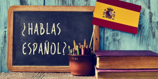 Spanish or Castilian?